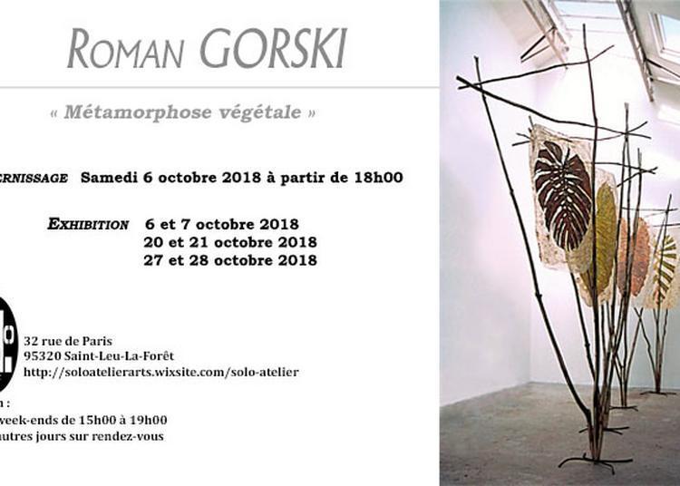 Exposition Roman Gorski à Saint Leu la Foret