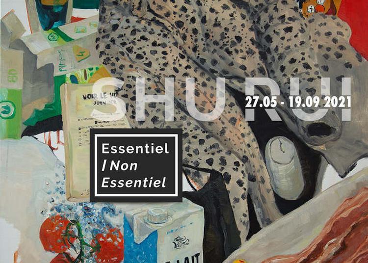 Exposition Shu Rui à Limoges