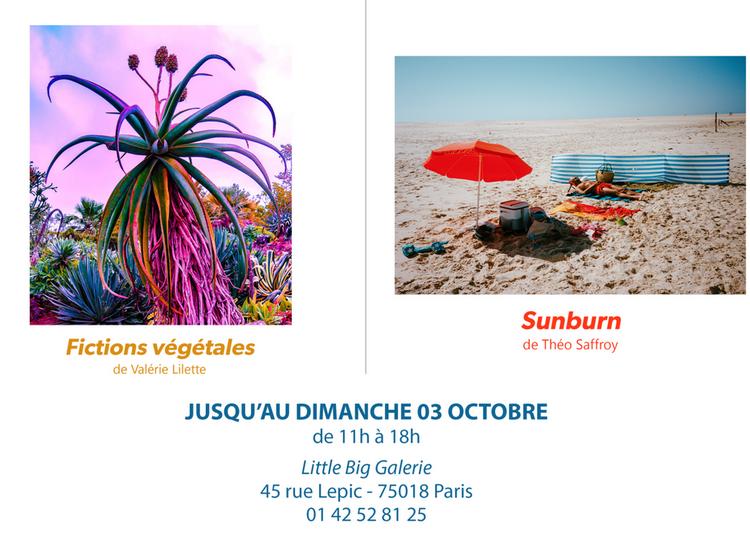Exposition Sunburn & Fictions Vegetales à Paris 18ème