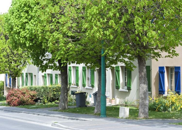 Exposition Sur L'histoire De La Construction De La Cité-jardin Du Chemin-vert à Reims