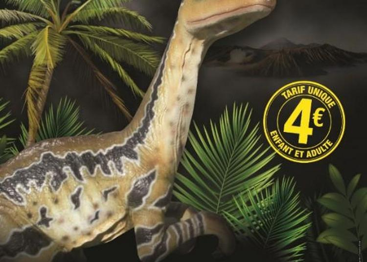 Exposition sur les Dinosaures à Saint Joachim