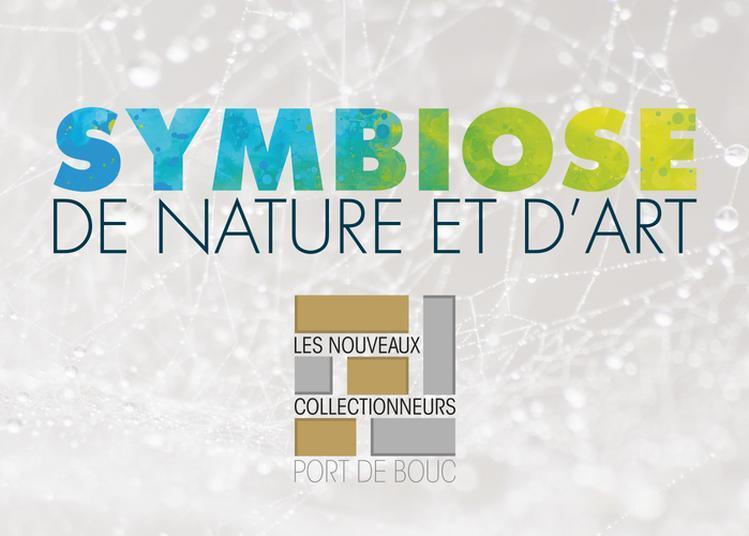 Exposition Symbiose, De Nature Et D'art à Port de Bouc