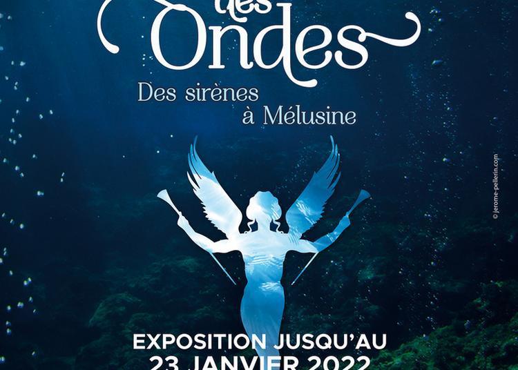 Exposition Temporaire Le Chant Des Ondes. Des Sirènes à Mélusine. à Bailleul