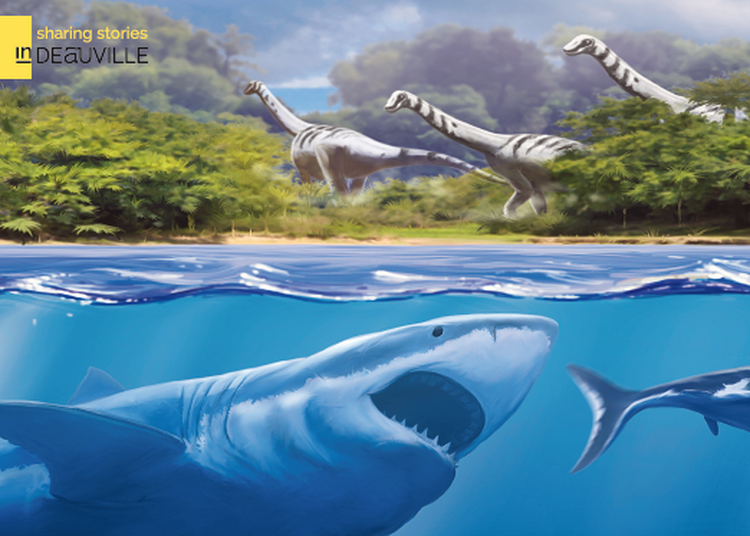 Exposition Temporaire : Les Requins ! 430 Millions d'années d'évolution à Villers sur Mer