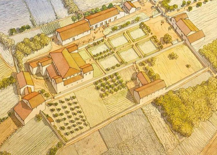 Exposition Temporaire - Luxe Et Quotidien Dans Les Villas Romaines De Sarreinsming à Bliesbruck
