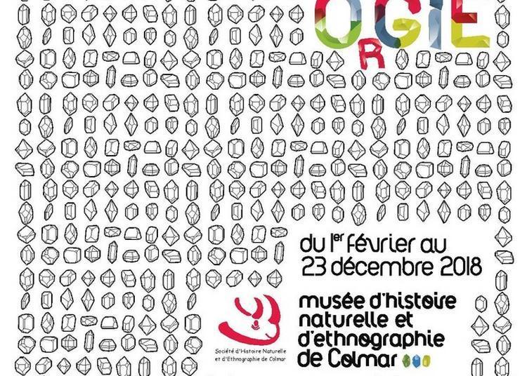 Exposition Temporaire Minéral'orgie à Colmar