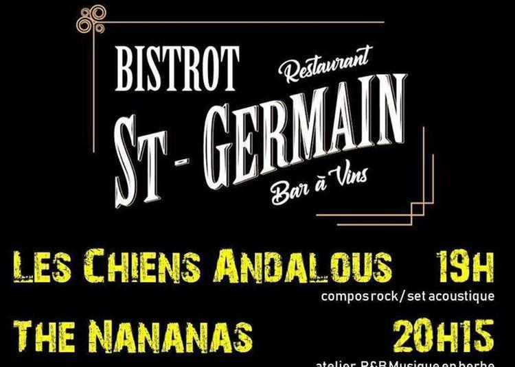 Les chiens Andalous - The Nananas (Fête de la Musique) à Amiens
