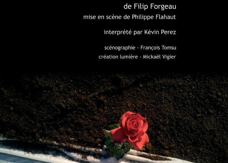 Federico(s) à Fleurance