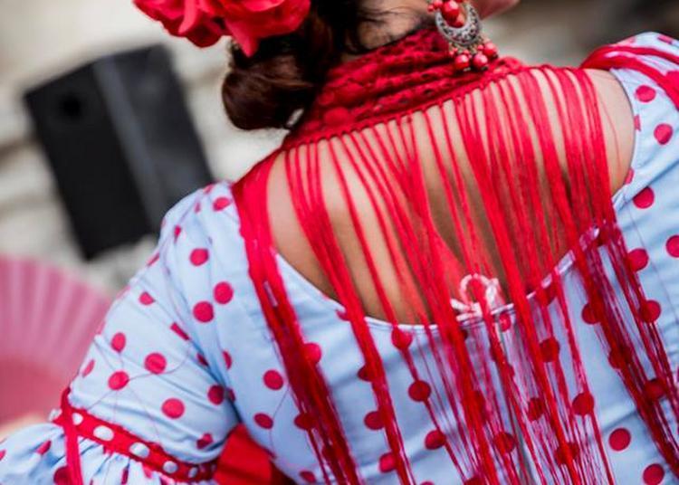 Femmes et flamenco à Dijon