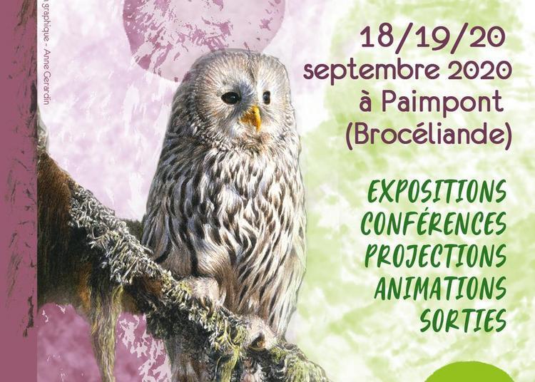 Festival art et nature - forêts 2020