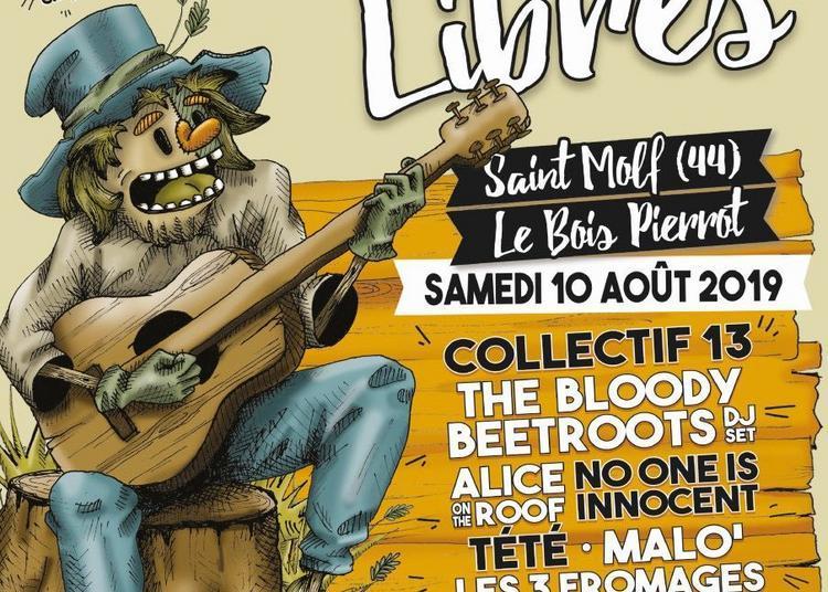 Festival Champs Libres 2019