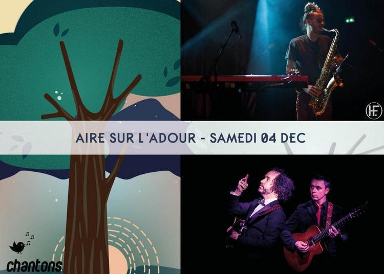 Festival Chantons sous les pins - Aire sur l'Adour