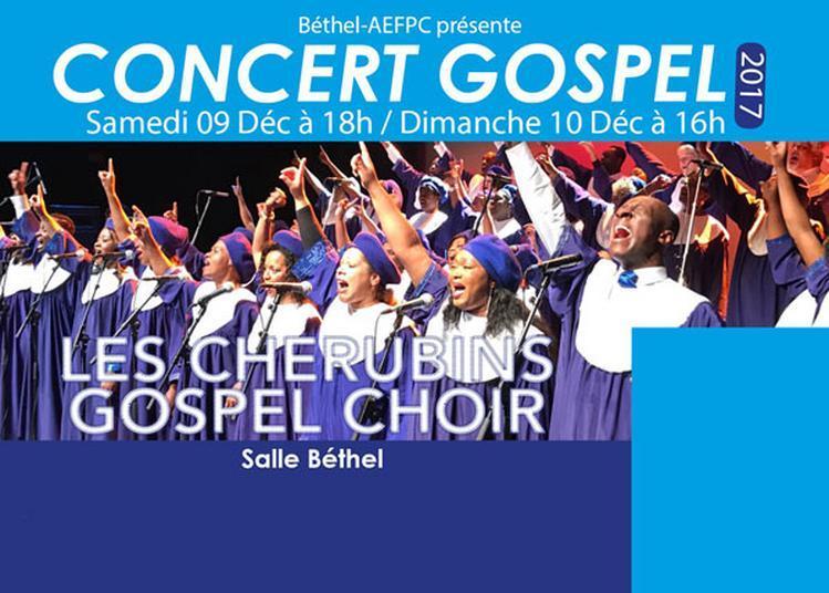 Festival Cherubins Gospel à Pierrefitte sur Seine