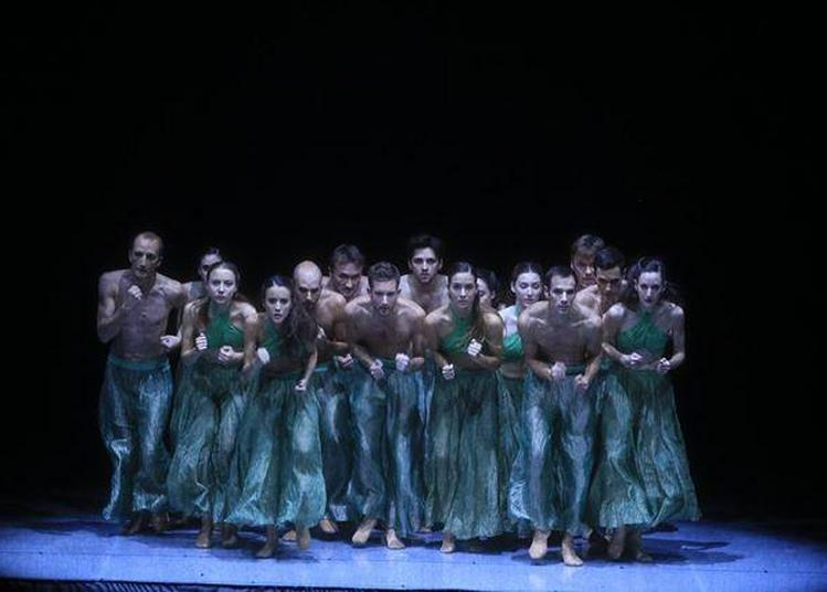 Festival Constellations Carmina Burana à Montigny les Metz