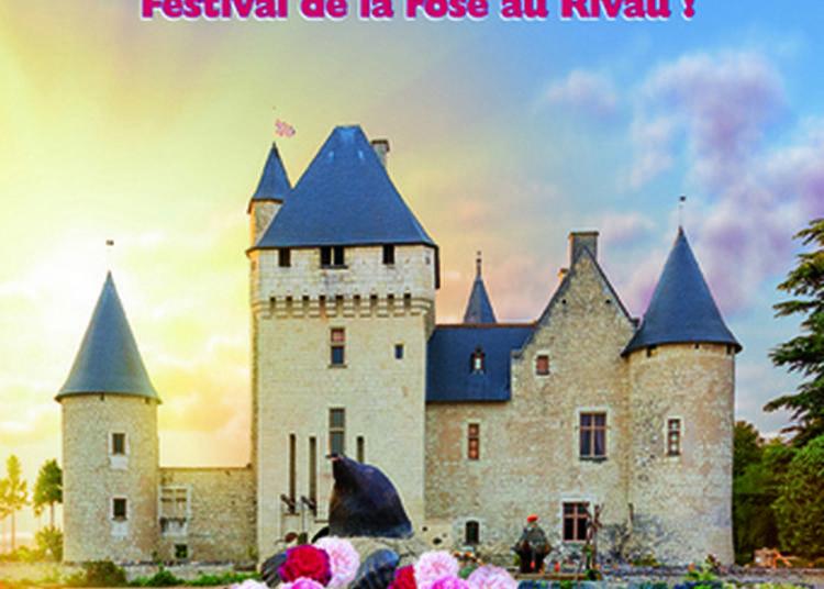 Festival De La Rose Au Rivau ! à Lemere