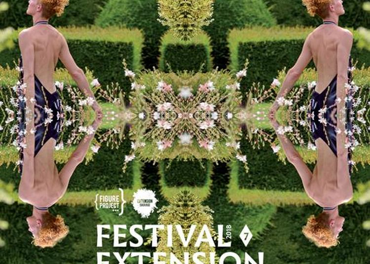 Festival Extension sauvage #7 2018