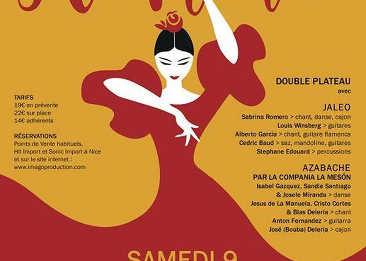 Festival Flamenco Louis Winsberg /Jaléo et Azabache Cie La Meson à Nice