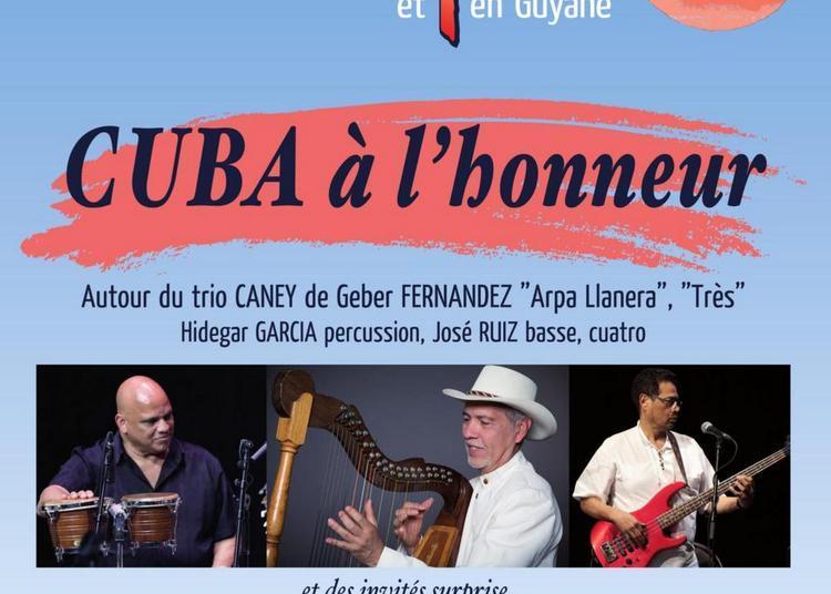 Festival journees de la harpe en Guyane