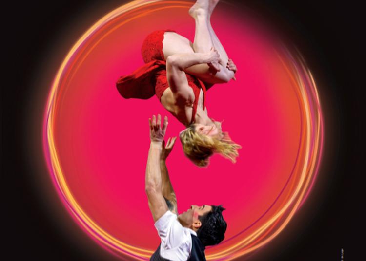 Festival jours [et nuits] de cirque(s) 2020