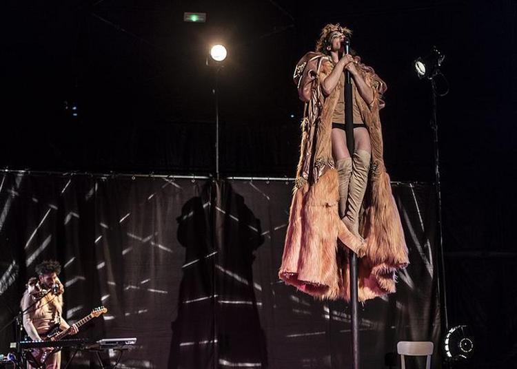 Festival La Nuit du Cirque 2021