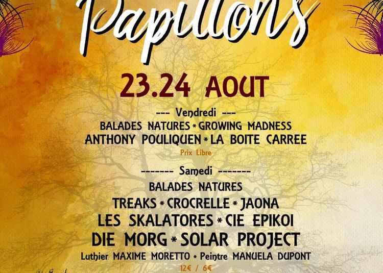 Festival Le Chemin des Papillons 2019