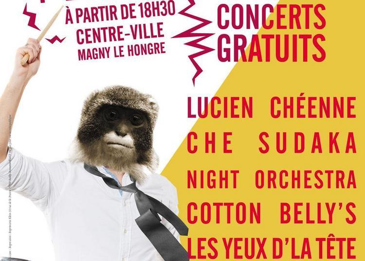 Festival les Magnytudes 2018