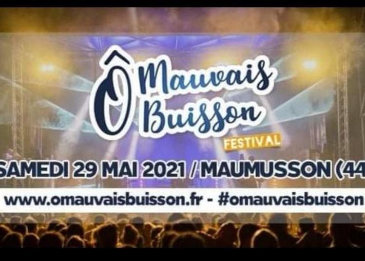 Festival Ô Mauvais Buisson 2021