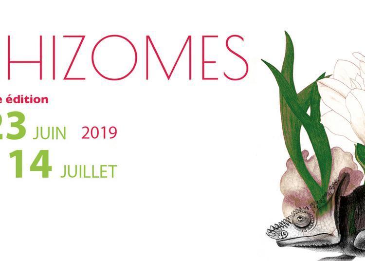 Festival Rhizomes    Dafné Kritharas   à Paris 18ème