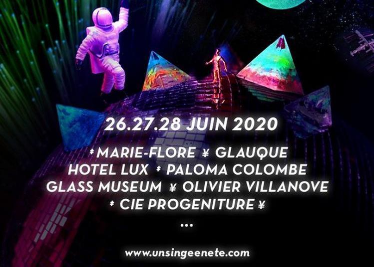 Festival Un Singe En Ete - Pass 1 Jou à Mayenne