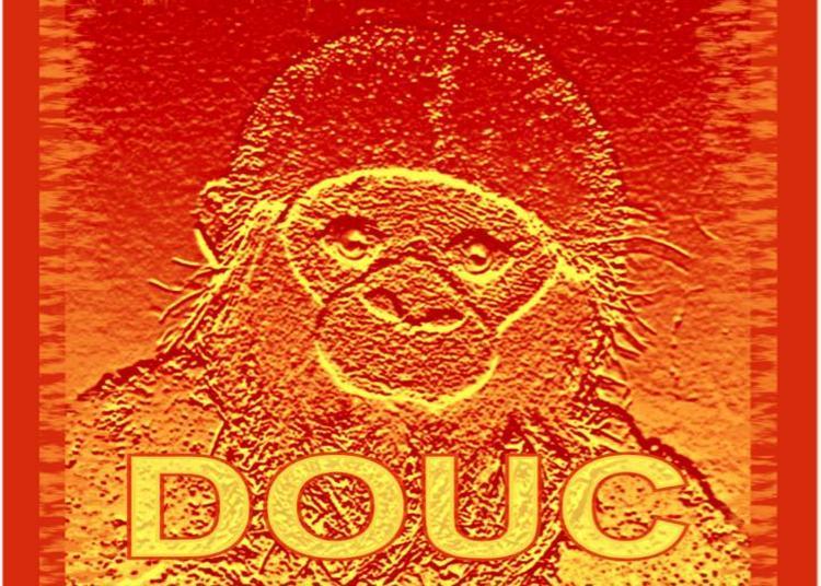 DOUC à Blois