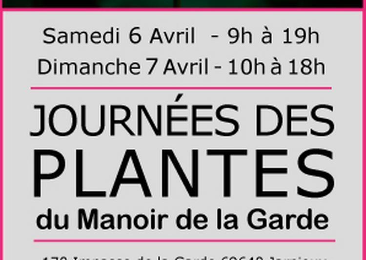 Fête des plantes rares du Manoir de la Garde à Jarnioux
