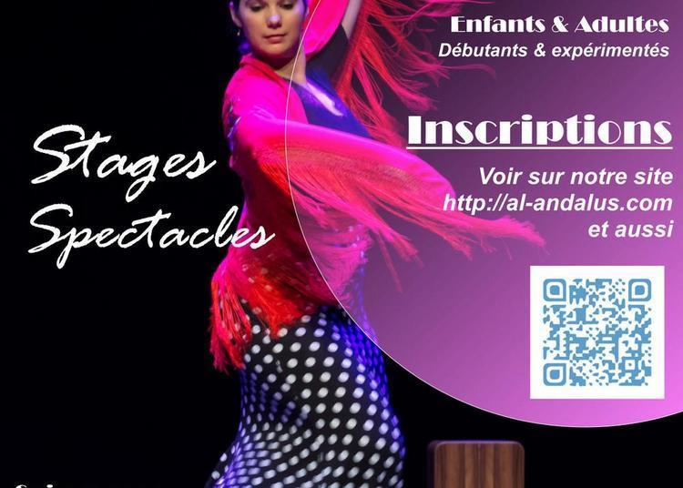 Flamenco en Auvergne à Riom