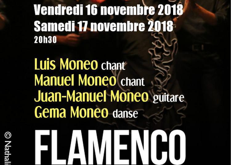 Flamenco Made In Jerez Avec La Famille Moneo à Paris 20ème