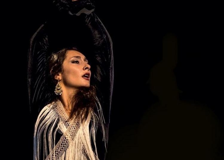 Flamenco Show Nati James à Paris 4ème