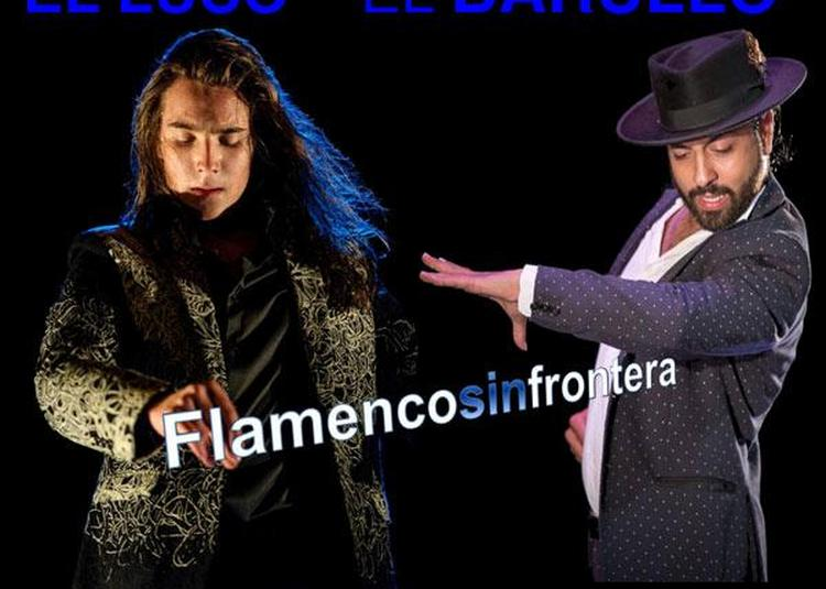 Flamencosinfrontera ! à Tarbes