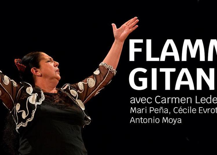 Flamme Gitane à Rennes