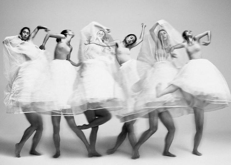 Floating Flowers - B. Dance à Noisiel