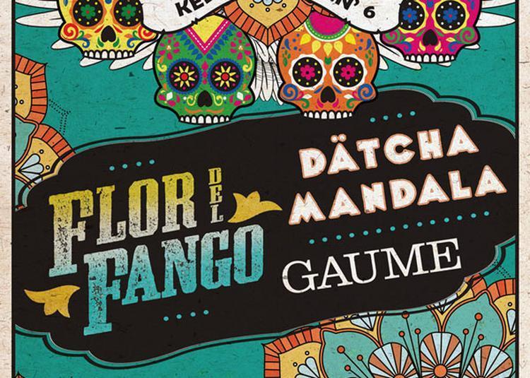 Flor Del Fango Datcha Mandala Gaume à Plougastel Daoulas