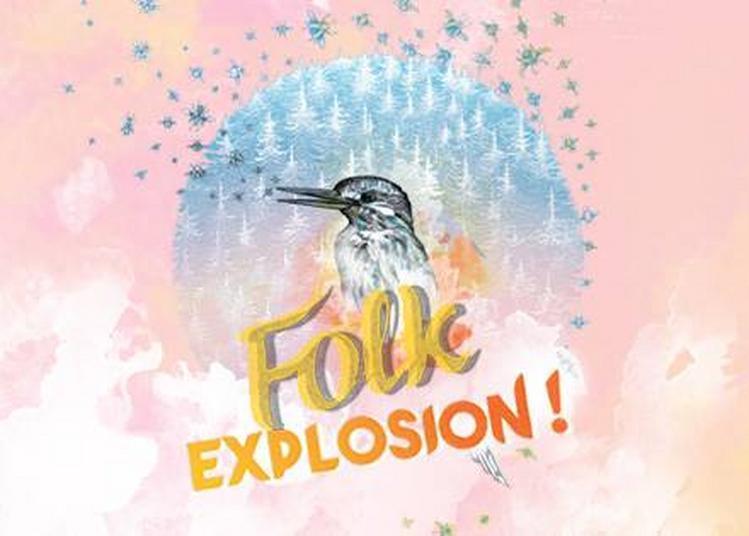 Folk Explosion ! W/ Xavier Boyer + Julien Pras+ Barbe Bleue à Paris 10ème