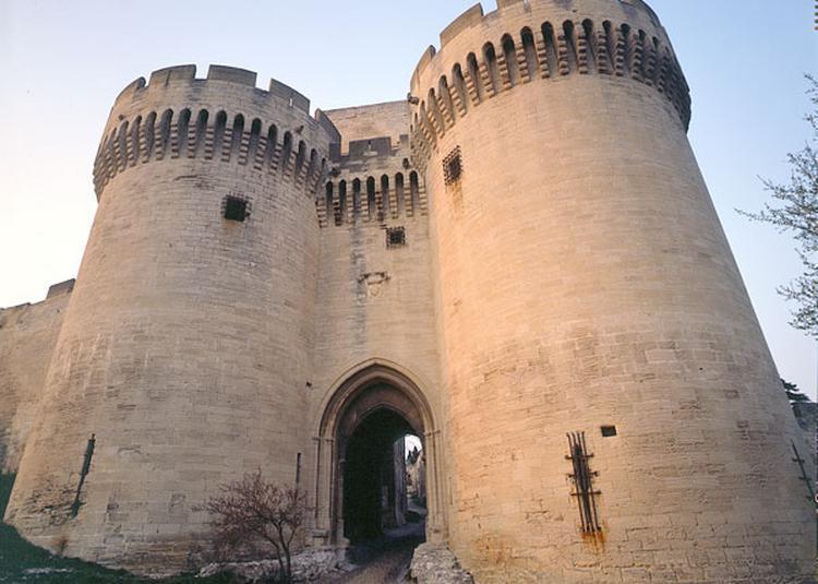 Fort Saint-andre à Villeneuve les Avignon