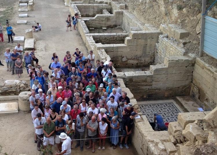 Forum De L'agglomération Antique Du Castellas à Murviel les Montpellier