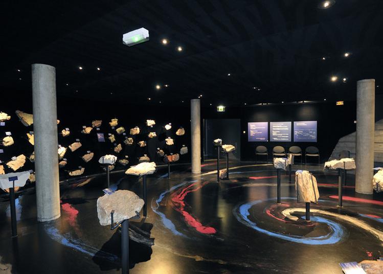 Fossiles, échantillons Minéralogiques, Roches... : Venez Voyager Aux Origines De Notre Planète ! à Ambazac