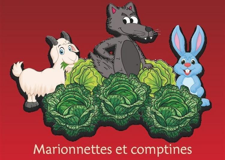 Fous De Choux à Marseille