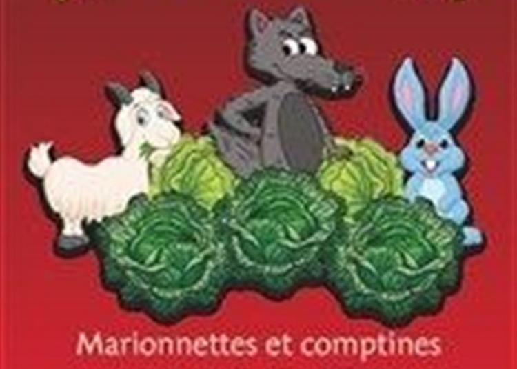 Fous De Choux à Aix en Provence