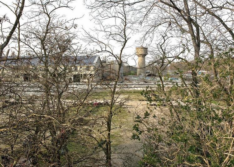 Fractal Factory à Paris 4ème