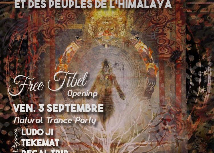 Free tibet Opening à Paris 12ème