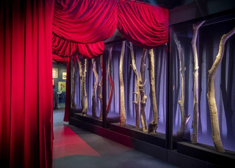 Frissons Et Rencontres Magiques Au Muséum à Toulouse