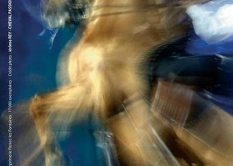 Gala des Crinières d'Or - Cheval Passion 2020 à Avignon