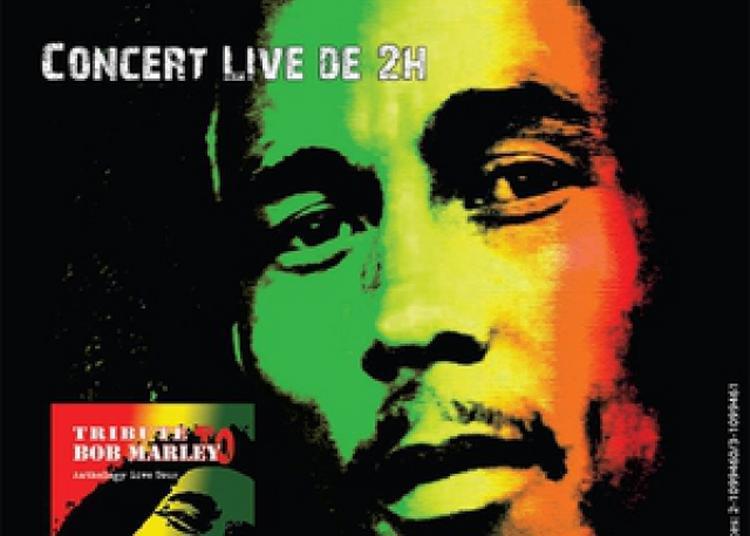 Génération Marley à Rennes