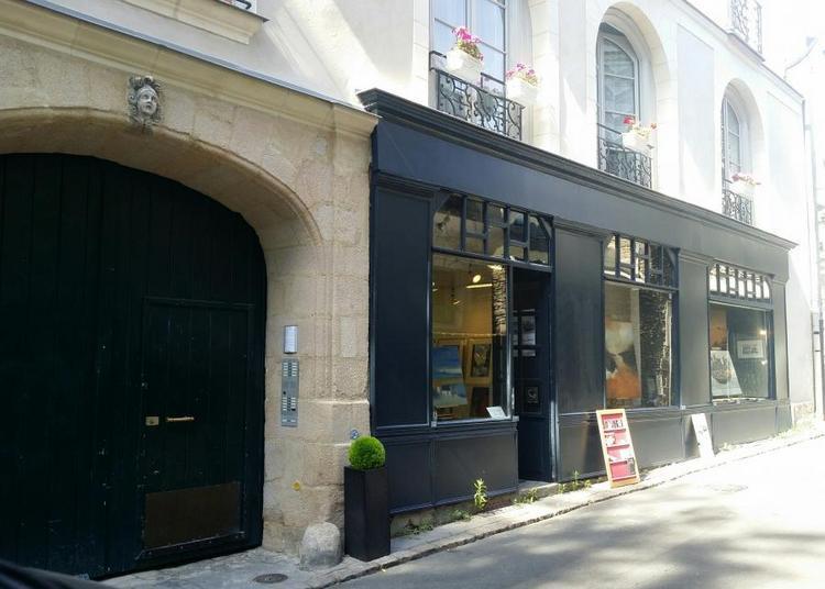 Chroniques Nantaises exposition de Tangui Robert à Nantes